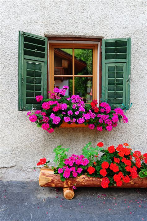 win with flower 40 window and balcony flower box ideas photos