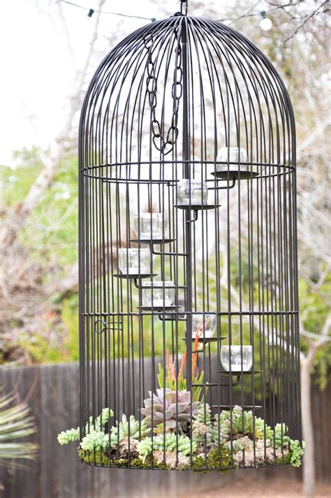 best 25 ideas on bird 25 best ideas about birdcage planter on bird