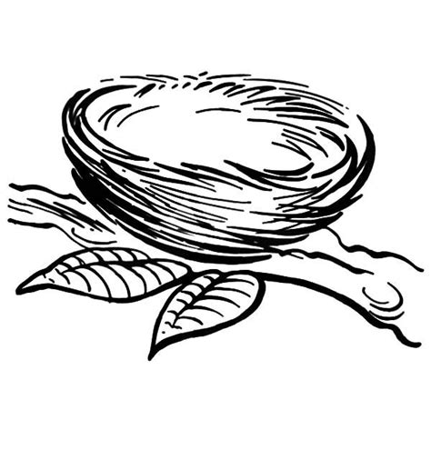 Coloring Page Nest by Bird Nest Coloring