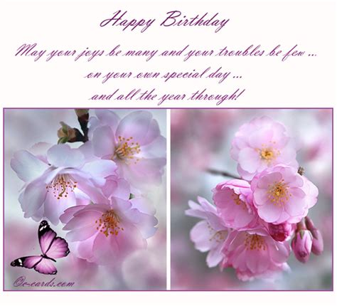 Birthday Cards Flowers Pictures Blossom Free Flowers Ecards Greeting Cards 123 Greetings