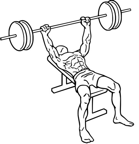 bench press procedure bench press