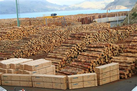 timberline woodworking tracking timber in the supply chain part 2