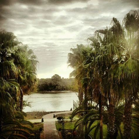 overdue in paradise the library history of palm county books palm coast florida has picturesque waterfront property