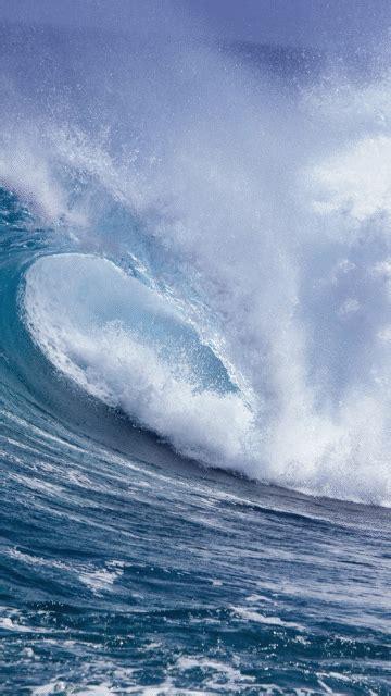 wave gif surfing ocean sea send beautiful gif message