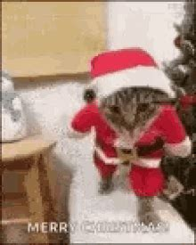 happy xmas gifs tenor