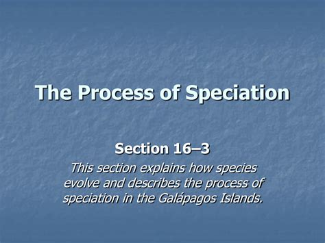 section 16 3 the process of speciation answers section 16 3 the process of speciation