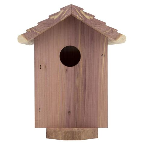 bird house shop garden treasures 6 5 in w x 7 5 in h x 6 75 in d red cedar bird house at lowes com