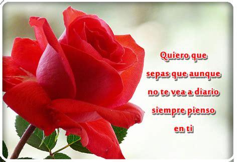 imagenes de rosas mas hermosas del mundo poemas para las como regalar las rosas mas hermosas del mundo de amor