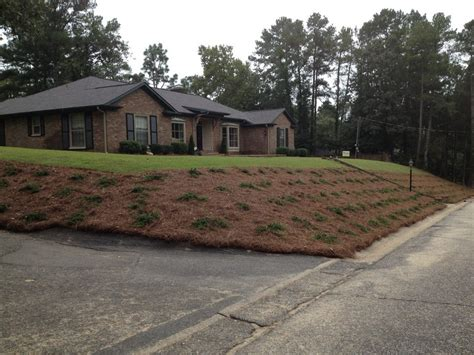 landscape redesigned and installed in fayetteville nc