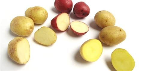 a guide to every type of potato you need to huffpost