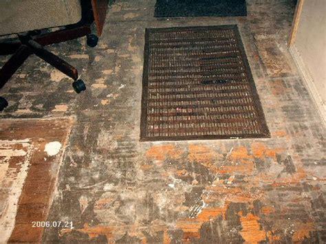 carpets removing carpet and carpet glue on pinterest