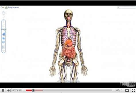 corps humain news photos vid 233 os
