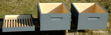 start a beehive in your backyard 100 start a beehive in your backyard beekeeping methods top bar hives diy