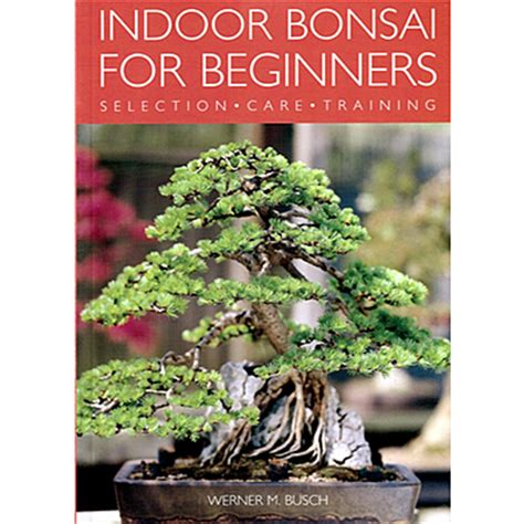 bonsai the beginners guide books bonsai books