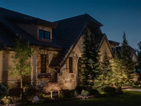 Pinetree Lighting by Tree Lighting Ideas 4 Concepts For Lighting Your