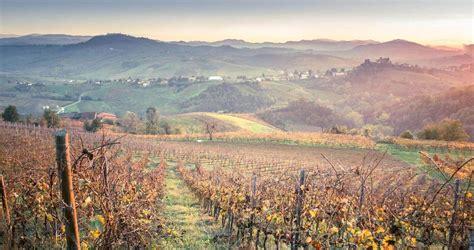 vini pavia pavia tramonti di vini