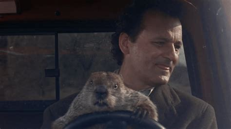 groundhog day existentialism 5 things you need to do before you graduate from iup