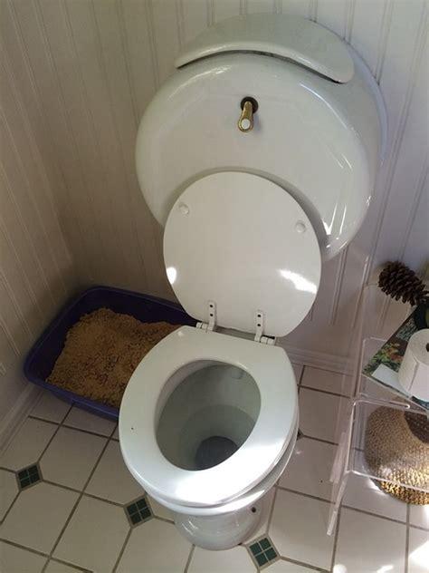 vater bagno free photo toilet wc bathroom plumbing free image on