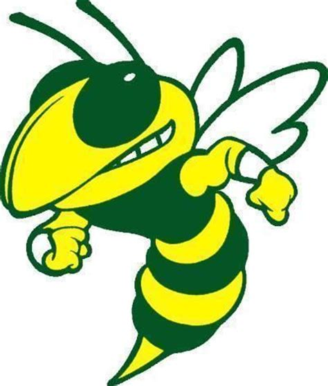 Pdf Real Name Of The Green Hornet by 12 Best Images About Hornet Logo On Back To