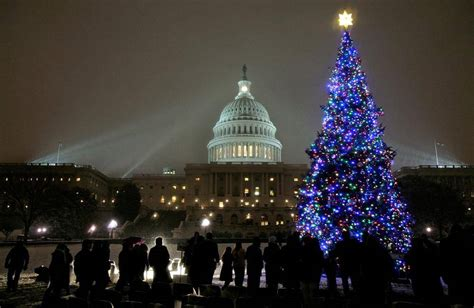 pelosi presides over capitol christmas tree lighting