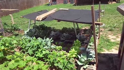 Vegetable Garden Shade Structures How To Shade Your Garden For Cheap