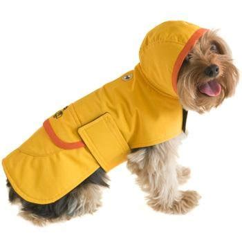 raincoats for dogs raincoats for dogs popsugar pets