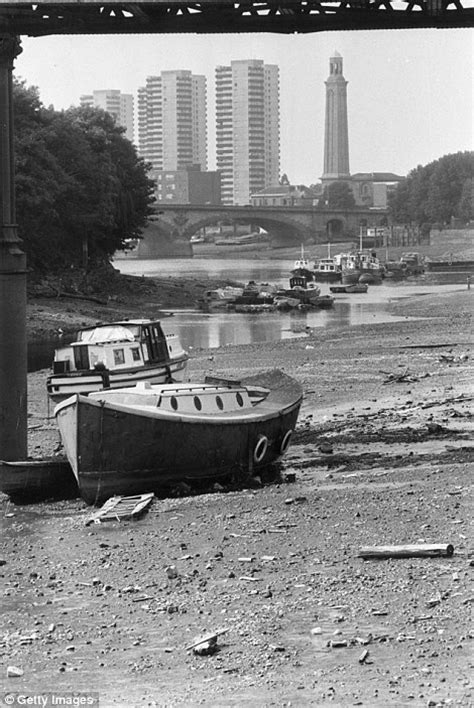 thames river boats from kew what do you remember about the scorching summer of 1976