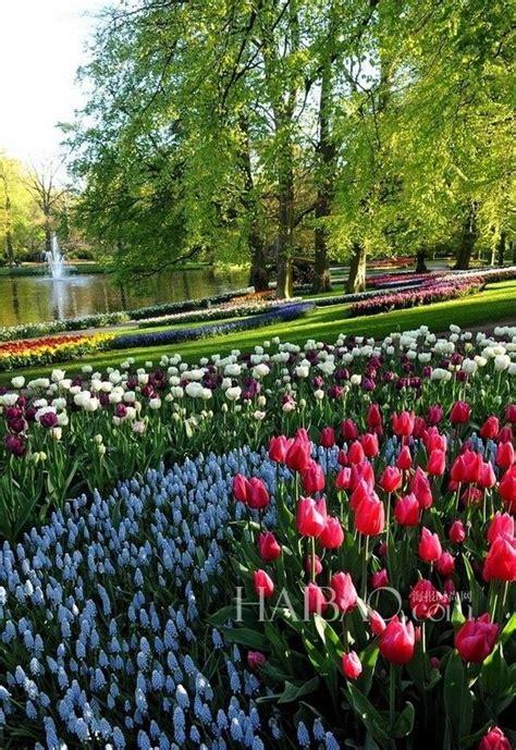 imagenes jardines mas hermosos mundo nueve jardines m 225 s bonitos del mundo 5