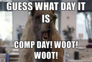 Woot Meme - guess what day it is comp day woot woot geico camel
