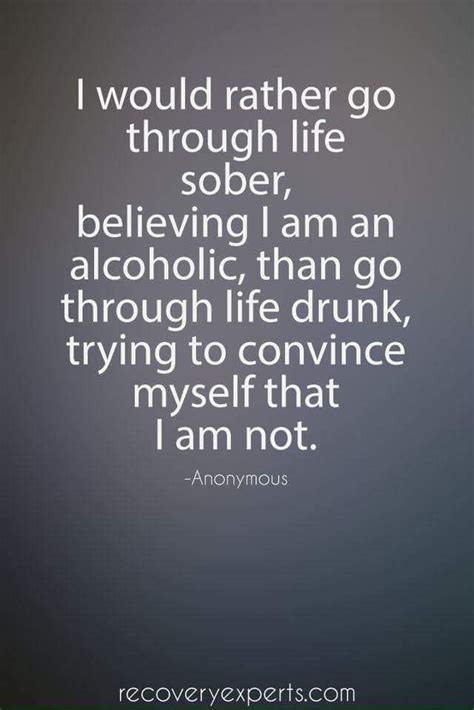 the sober diaries how one stopped and started living books 25 best sobriety quotes on sobriety
