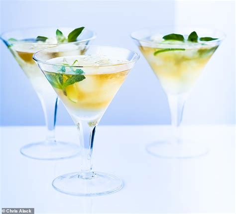 martini mint pretty mint julep martini daily mail