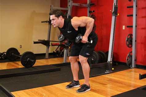 high bench two dumbbell rowing bent over two dumbbell row exercise guide and video