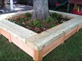 box around tree garden designs trees