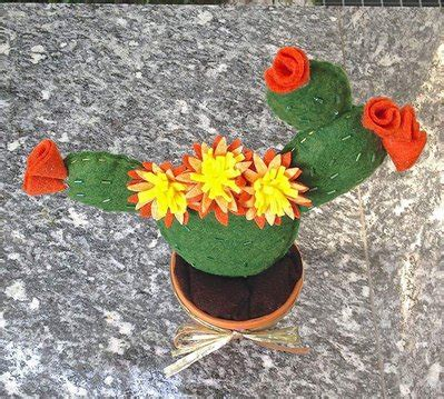 fico d india in vaso cactus fico d india in vaso di terracotta per la casa e