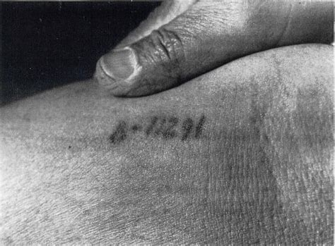 auschwitz tattoo victims of the holocaust in occupied europe 1930s 1940s