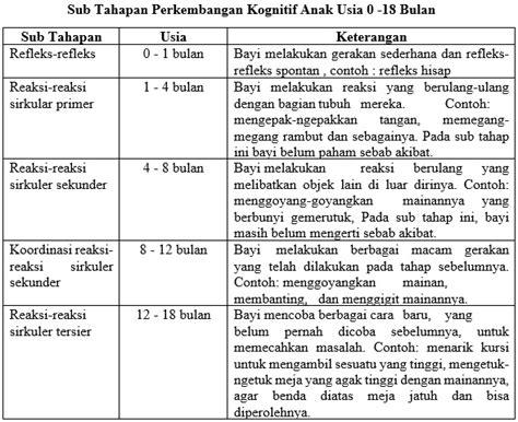 24 M Usia Anak 9 Sai 18 Bulan rangkuman perkembangan kognitif anak usia dini jendela ilmu