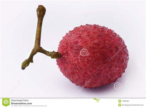 fruit similar to lychee lychee fruit royalty free stock photo image 11963655
