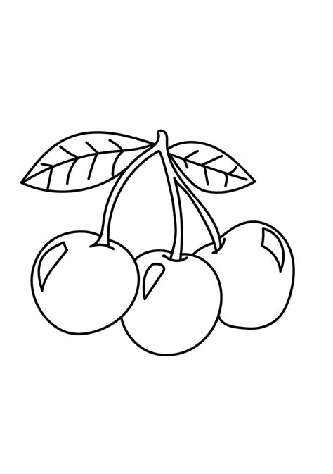 cherries coloring page  printable coloring