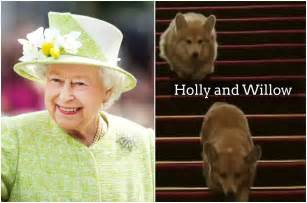 Queen Elizabeth Dogs queen elizabeth dogs corgis holly and willow