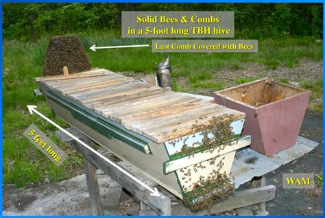best top bar hive top bar apiaries 200 top bar hives the low cost sustainable way