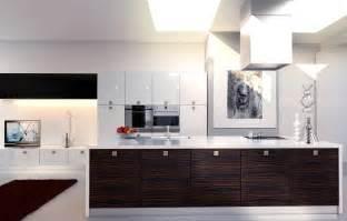 inspiration white kitchen cabinet cabinets