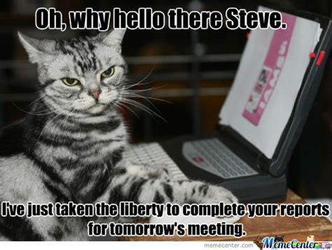 Cat Laptop Meme - computer cat s friendly gesture by recyclebin meme center