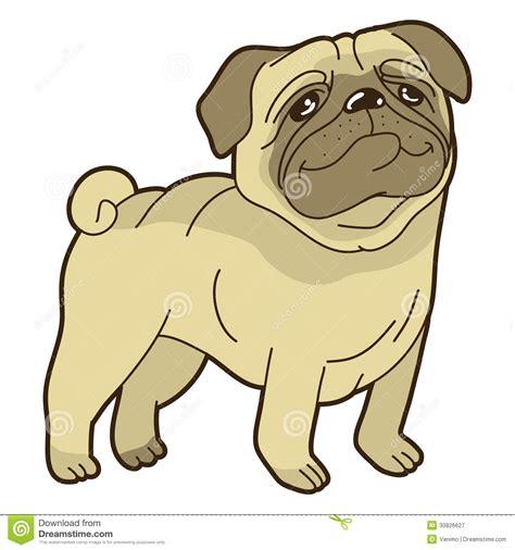 comic pug vector pug royalty free stock photography image 30826627