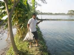 Essence Galatama Umpan Mancing Ikan Tetes Kokom ghondek fhising umpan galatama ikan