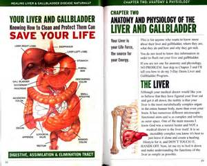 Liver pancreas gallbladder diagram lzk gallery