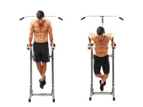 bench dips for chest best chest workouts of 2016 top 3
