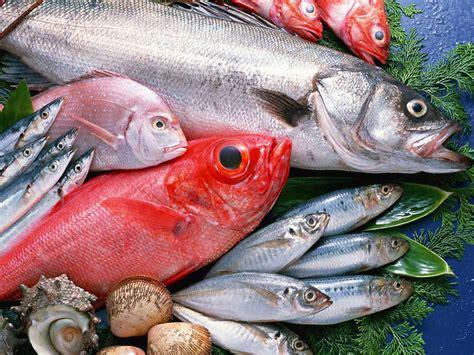 alimentazione infantile alimentazione infantile tutto sul pesce dna dieta bologna