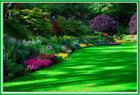 imagenes de jardines hermosas image gallery jardines de flores hermosas