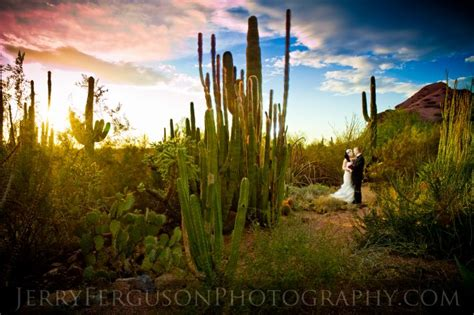 Desert Botanical Garden Wedding by 30 Best Botanic Garden Wedding Venues In The U S A Onewed