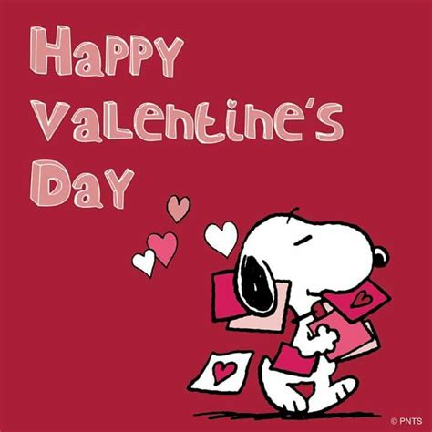 snoopy images  pinterest peanuts characters